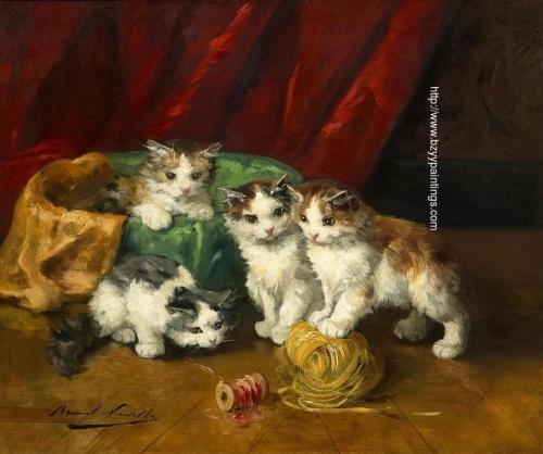 spielende katzchen.jpg