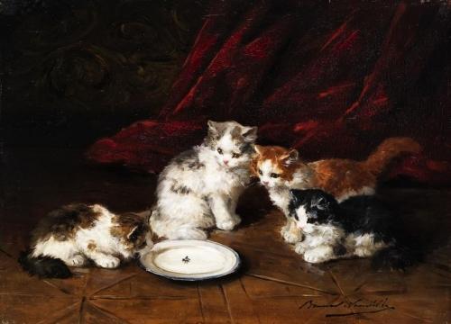 vier katzchen an einem milchteller mit fliege.jpg